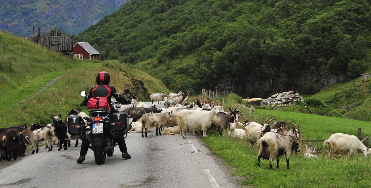 Motorrad-Touren unter 1000 Euro