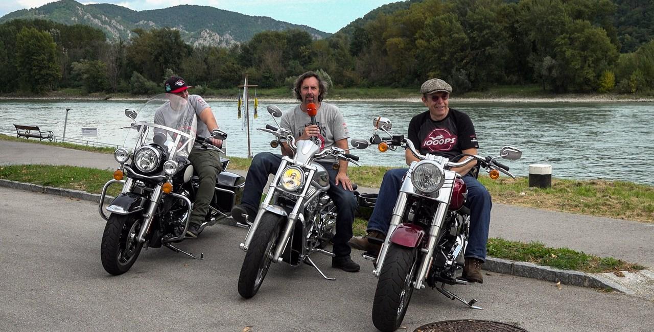 Harley-Davidson Gebrauchtbiketest 2020