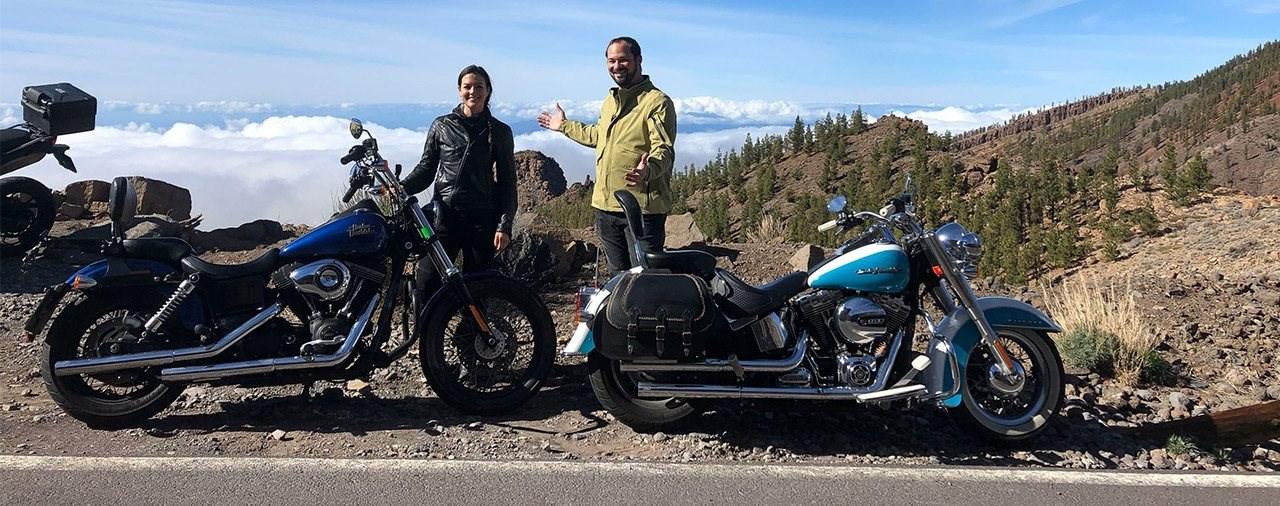 Harley Davidson Softail und Dyna 2015 im Gebraucht Test