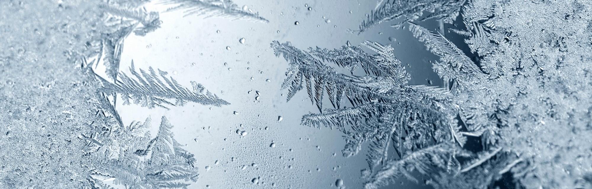 Honda Evecan Winter-Service