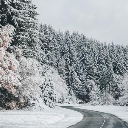 Saisonende  Tipps und Tricks zur Überwinterung bei SaisonendeHallo Motorrad- und Rollerfahrende das Saisonende naht,leider geht jede Motorrad- und Rollersaison irgendwann zu Ende da es witterungsbedingt durch Nebel, Regen, Schnee ode...