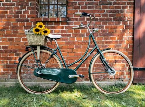 EXCELSIOR - Classicräder / Singlespeed & Fixie Bike 2021