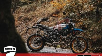 Neumotorrad Ducati Scrambler Desert Sled