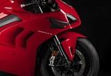 Ducati Panigale V4 2020 Bilder