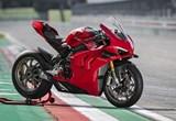 Ducati Panigale V4 S 2020 Bilder