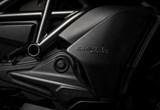 Ducati Diavel 1260 Dark Stealth 2021 Bilder