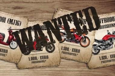 Wanted Aktion 2017