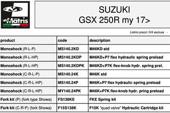 Bild zum Bericht: Suzuki GSX-S 1000 Katana und GSX 250R: Matris Fahrwerksoptimierungen erhältlich!