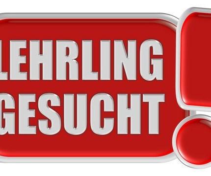 Lehrling gesucht!  KTM-Betrieb Bernhard Walzer in Neumarkt, ihr kompetenter Ansprechpartner für KFZ-Reparaturen, KFZ-Neuanschaffungen, ... Weiter >>